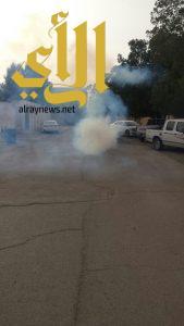 بلدية القيصومة تقوم بحملة رش المبيدات الحشرية في أحياء المدينة
