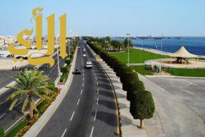 بلدية القطيف تستعد لاستقبال الإجازة بمليون زهرة