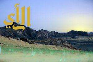 صحراء جبال بني سنامة في وادي الدواسر تكتسي بالأخضر