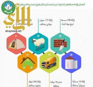 أمانة الرياض تزيل أكثر من 1100 عنصر ملوث عن المدخل الشرقي للعاصمة