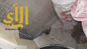 قرية العليا: مصادرة 30 كلجم و 6500 ريال مخالفات ضمن حملة على المخابز