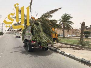 بلدية بقيق تستنفر طاقاتها لمعالجة الأضرار الناتجة عن موجة الغبار