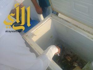 بلدية محافظة الخفجي تغلق محلين وتتلف 5 كيلو من اللحوم