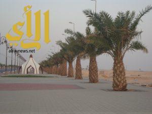 بلدية الرفيعة تزرع 2000 زهرة وتنفذ حملة على صوالين الحلاقة