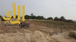 بلدية الجبيل تنفذ حملة لتنظيف المقابر بالمحافظة
