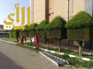 بلدية وادي الدواسر تواصل استعداداتها لاستقبال عيد الفطر المبارك