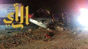جمل سائب يقتل 6 اشخاص بالقرب من الرين