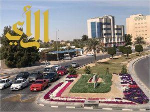 بلدية القطيف تزرع مليون زهرة في شوارع وأحياء المحافظة