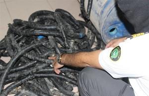 إحباط تهريب مخدرات داخل أنابيب حلزونية بجمرك الحديثة