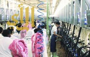 """الخرج : انقطاع الكهرباء عن بعض مرافق الإنتاج والتصنيع في """"المراعي"""""""