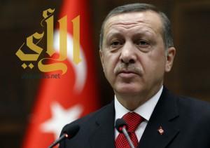 أردوغان: تركيا ستجد مصادر طاقة بديلة عن روسيا