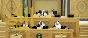 """""""الشوري"""" يصوت على مشروع نظام هيئة الجمعيات والمؤسسات الأهلية"""