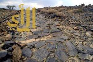 إنجاز مشروع مسح وتوثيق وتبتير 37 موقع على طريق الفيل التاريخي