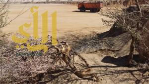 فرع الزراعة بطريب يوقف تعديات بلدية طريب على الغابات بالمنتزه العام