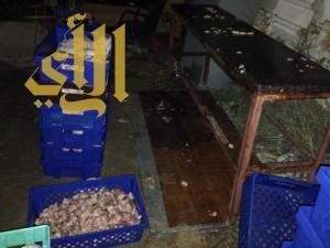 بلدية القطيف تداهم مطاعم وتتلف ٦٠ كيلو من الأسماك
