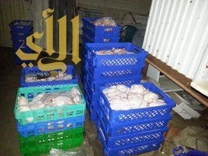 ضبط واتلاف أكثر من 16 الف دجاجة فاسدة في القطيف