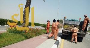 بلدية رأس تنورة تقوم بأعمال صيانة وتنظيف بكورنيش المحافظة
