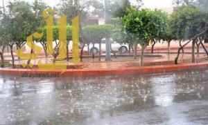 أمطار غزيرة على الطائف .. والدفاع المدني يحذر
