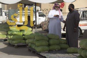 وادي الدواسر تسوق مابين 500 – 800 مركبة من الحبحب يومياً