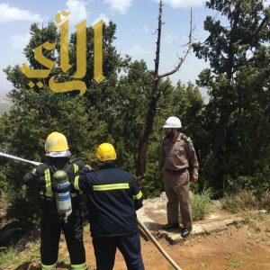 مدني بالباحة يطبق فرضية حريق في منتزه الأمير مشاري بن سعود