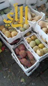بلدية محافظة القطيف تتلف نصف طن خضروات وفواكه فاسدة