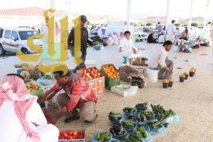بلدية الحرجة تكثف حملاتها التفتيشية في رمضان