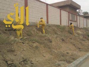 أمانة عسير تواصل أعمال نظافة مدينة أبها بحملات مكثفة