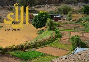 أمطار الخير والبركة تهطل بغزارة على محافظة رجال ألمع
