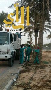 بلدية الجبيل تحجز شاحنات لمخالفتها برمي الأنقاض في أماكن غير مخصصة