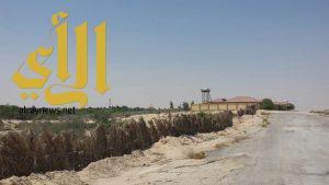 مجلس بلدي الأحساء يوقف تجاوزات على أراضي بيضاء في مدينة العيون