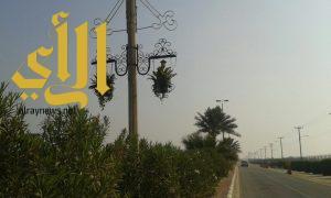 بلدية رأس تنورة تكثف الأعمال الرقابية على المسلخ ومراقبة الكورنيش في عيد الأضحى المبارك