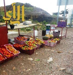 الشهري : إزالة 222 بسطة عشوائية ومصادرة 7860 صندوق فاكهة وحزمة حطب بالسودة