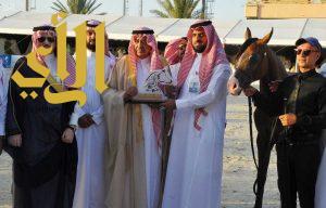 اختتام بطولة جمال الخيل العربية الخامسة بالطائف