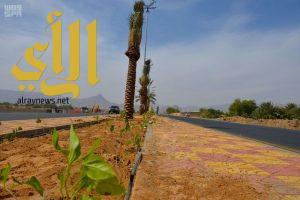 أمانة نجران تنجز 89 % من مشروع تحسين وتجميل طريقي الملك عبدالله والأمير سلطان