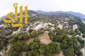 الجره تحتضن الاحتفال باليوم العالمي للغابات 21 مارس