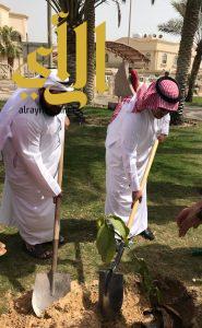 """بلدية الخبر تطلق """" حديقتي بستاني """" لزراعة 1000 شجرة مثمرة في الحدائق"""