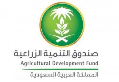 صندوق التنمية الزراعية يعتمد قروضاً لتمويل مشاريع بالداخل واستيراد مواد غذائية من الخارج