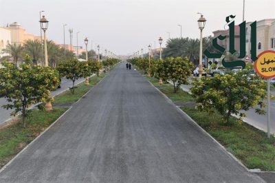 """بلدية #الخبر تنتهي من إعادة تأهيل """" ممشى الراكة """" بطول 800 متر"""