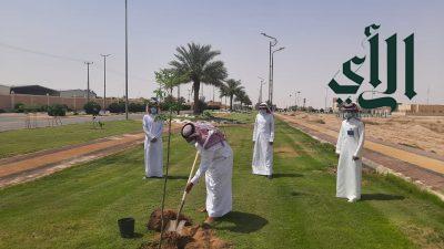 بلدية #اللهابة تواصل جهودها بزراعة أشجار الظل والزينة باللهابة والمراكز التابعة