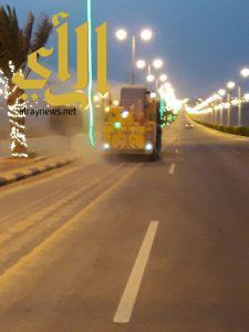 بلدية الذيبية تضاعف جهودها في المسلخ والنظافة والرقابة الصحية