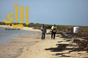 ٢٥ فوتوغرافيا يوثقون شواطيء وجزر محافظة البرك