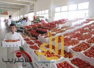 أسعار الطماطم تشهد انخفاضاً تدريجياً في عدد من الأسواق