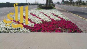بلدية محافظة رأس تنورة تزرع 70000 زهرة الشهر الماضي