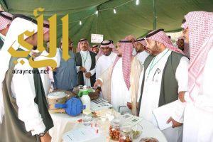 """وزارة البيئة تنظم فعاليات """"اليوم الحقلي الإرشادي"""" بوادي الدواسر"""