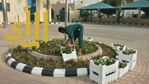 بلدية الجبيل تزرع 22 ألف شجرة وشتلة في كافة أنحاء المحافظة