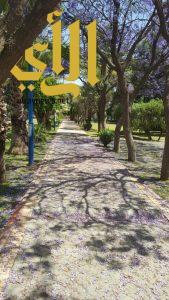 أمانة عسير تنتهي من تطوير حديقة الأندلس بأعمال ري اوتوماتيكي تزيد على 5 الآف متر طولي
