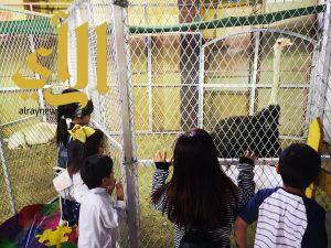 حديقة الحيوانات تفتح أبوابها لزوار مهرجان صيف نجران 39