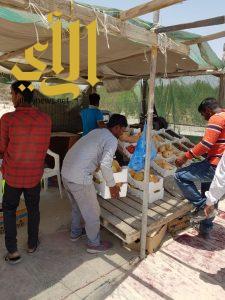 بلدية صفوى: ضبط 1500 كلجم مواد غذائية من الباعة المخالفين