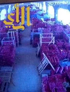 أمانة الشرقية: 23 كاميرا مراقبة في سوق الخضار والفواكه المركزي.. وتطوير كامل للسوق