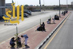 بلدية الخبر : مبادرات تطوعية في التشجير والزراعة